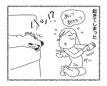 羊の国のラブラドール絵日記シニア!!「寝起きドッキリ!」3