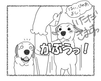 羊の国のラブラドール絵日記シニア!!「パッション!」3