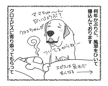 羊の国のラブラドール絵日記シニア!!「風邪のため延期」1