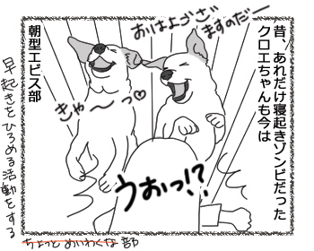 羊の国のラブラドール絵日記シニア!!「ビフォー&アフター」1