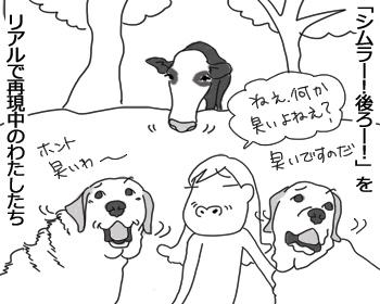 羊の国のラブラドール絵日記シニア!!「週末ピクニック」イラスト1