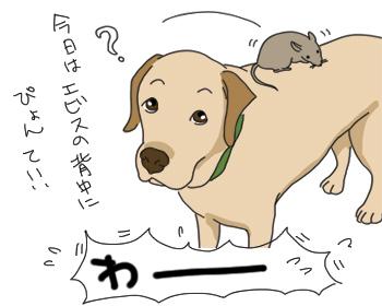 羊の国のラブラドール絵日記シニア!!「外は寒いので」5
