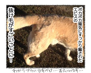 羊の国のラブラドール絵日記シニア!!ケッコウ毛だらけな・・・?1