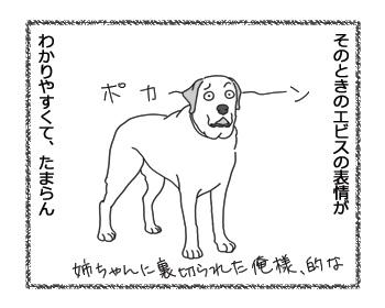 羊の国のラブラドール絵日記シニア!!「そりゃないぜ、姉ちゃん!」4