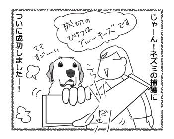 羊の国のラブラドール絵日記シニア!!「キャッチ&リリース」1