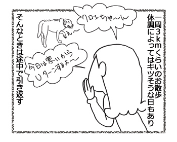 羊の国のラブラドール絵日記シニア!!「大丈夫、まってる」1