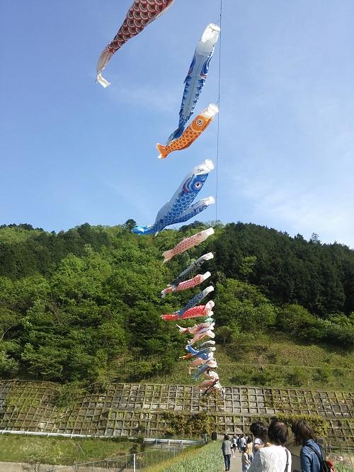 fujikouen4.jpg