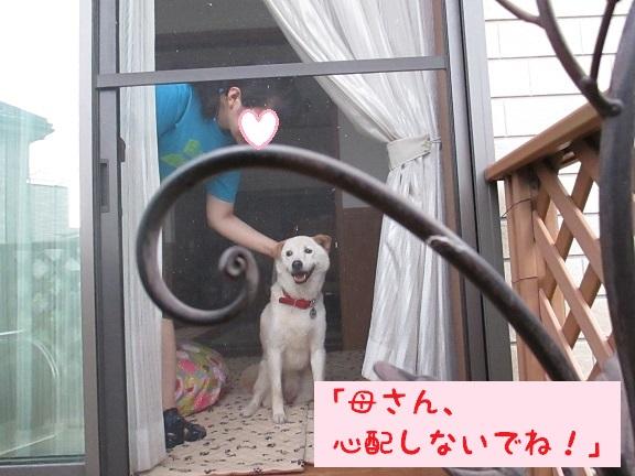IMG_2314.jpg