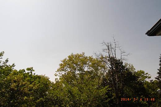 qq3673.jpg