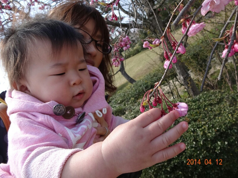 fc2_2014-04-13_02-35-22-390.jpg