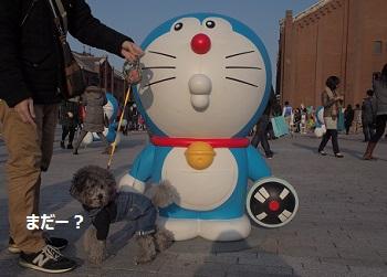 ジジ赤レンガ倉庫20140309-8