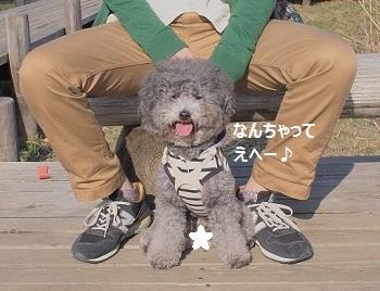 てくてくじじさんぽ-4