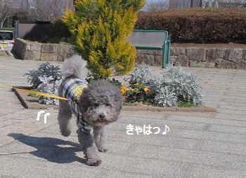 じじのこうえん20140315-3