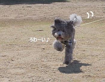 じじのこうえん20140315-4