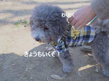 じじのこうえん20140315-7
