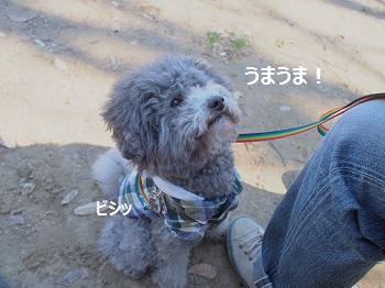 じじのこうえん20140315-15