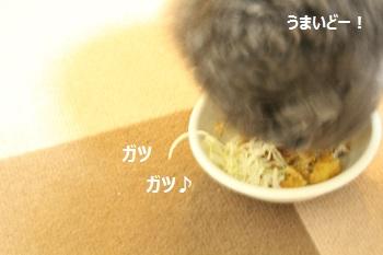 ちょこたんちで夜ご飯20140517-6