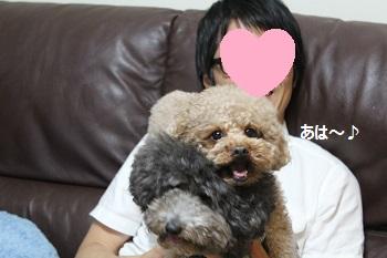 ちょこたん家20140517-6