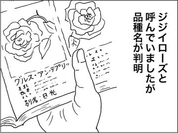 kfc010507.jpg