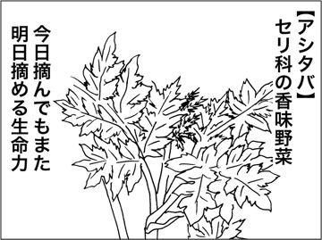 kfc020805