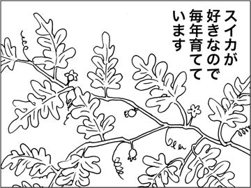 kfc040401