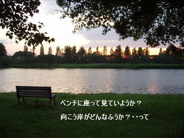 8040135_1863976182.jpg