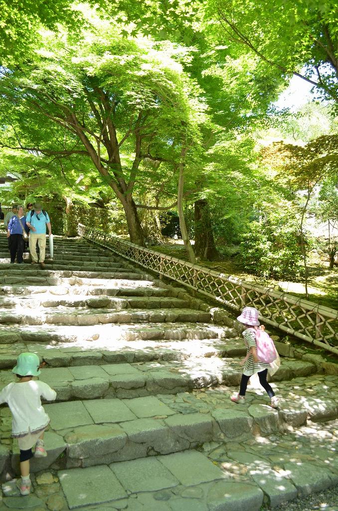 ryoanji-3.jpg