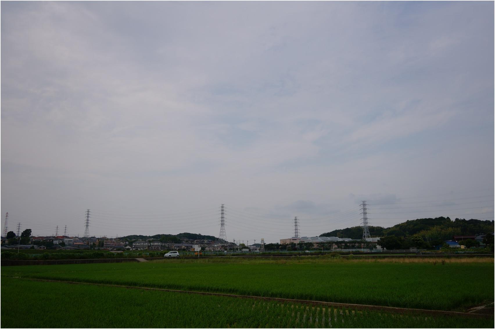 20140621DSC02041.jpg
