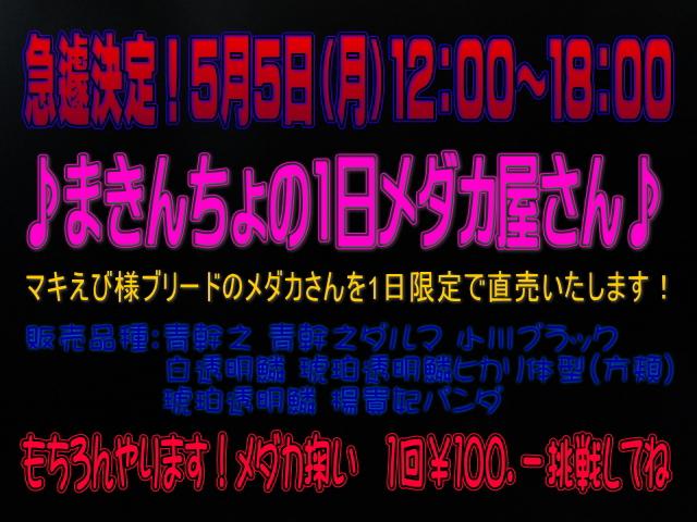 20140503185040966.jpg