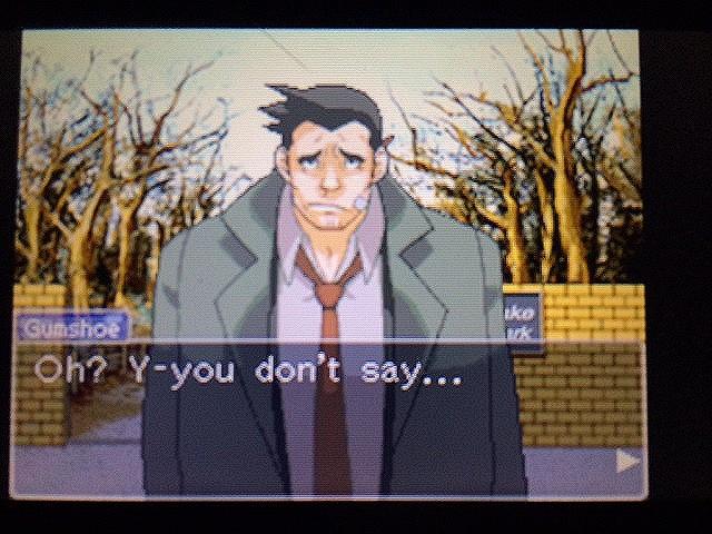 逆転裁判 北米版 ゴード・レイクと怒りのガムシュー32