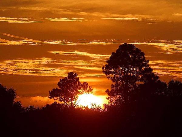 800px-Sunrise_in_Africa_convert_20140619223138.jpg