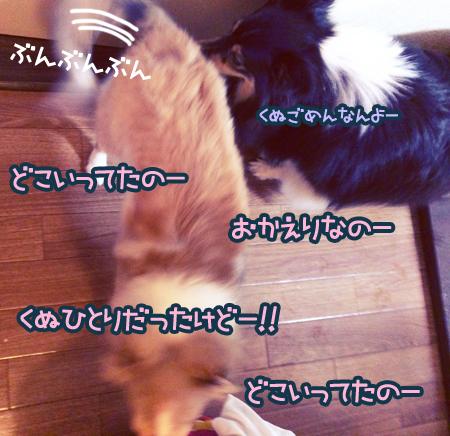S__4784152.jpg