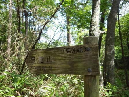 IMGP1501 山頂までは1時間30分