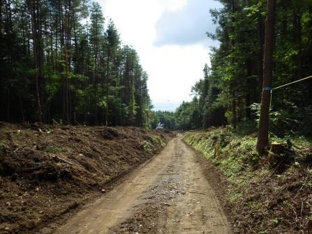 IMGP1742 林道拡幅工事中