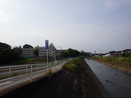 IMGP1496.jpg