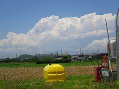 [写真]農園の西側に広がる青い空と白い雲の様子