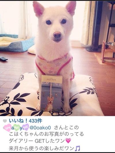 fc2blog_20140916212946951.jpg