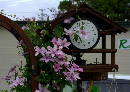 s-479-1時忘れの庭