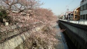 fc2_2014-03-28_17-00-15-000.jpg