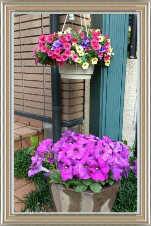 fc2_2014-05-13_18-00-45-356.jpg