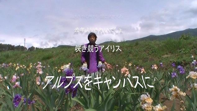 アイリス畑で癒されて MV