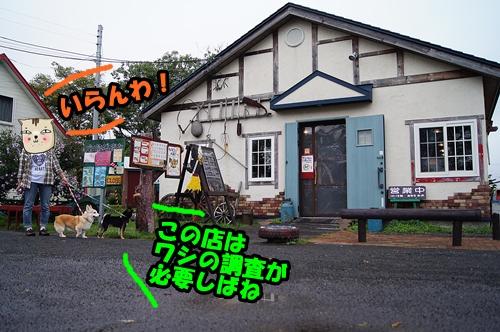 20140905-017.jpg