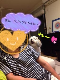 fc2blog_20140625002849a9d.jpg