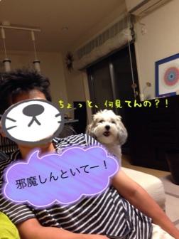 fc2blog_20140625002928fc1.jpg