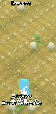 恋咲島 キャッツアイ 巨大ジャガイモまみれ
