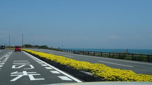 富士山が見える宿日本一に選ばれた 松濤館(2014年5月)