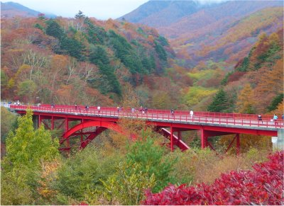2013kiyosato.jpg