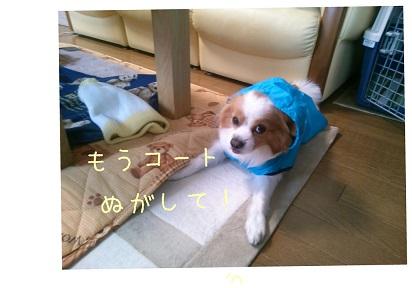 20140305_101046.jpg