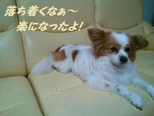 KIMG0746.jpg