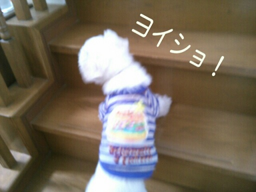 PE_20140323213417.jpg